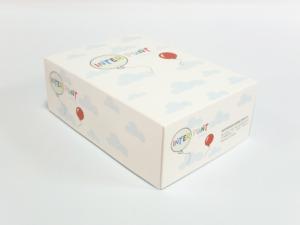 Caja cartón 4 tintas 23x16x8cm