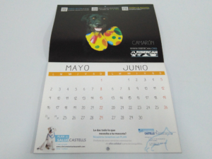 Calendario pared 48x32 cm 4+4 tintas bimensual